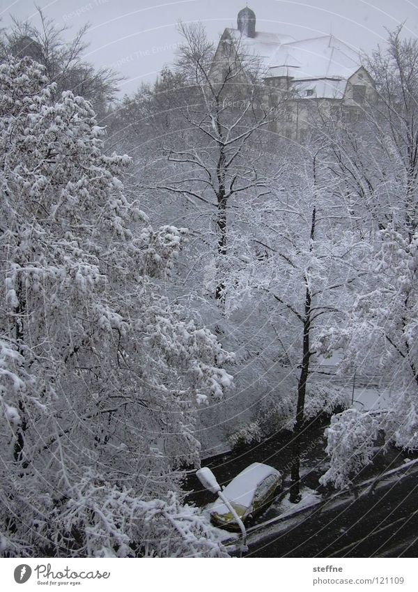 White Tree Winter Snow Building Car Flat (apartment) Large Climate Living or residing Balcony Vantage point Climate change Snowflake Attic story