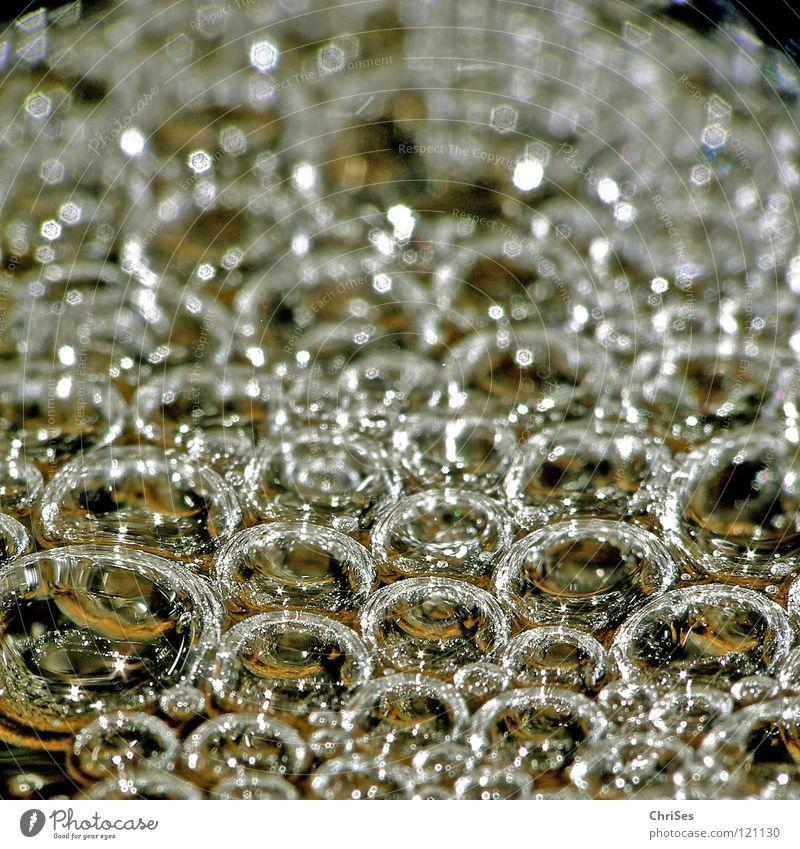 Water Cold Wet Gold Bathroom River Clarity Cute Blow Damp Brook Soap bubble Air bubble Refreshment Flow Foam