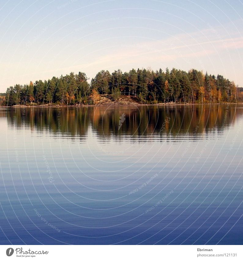 Beaver Island Lake Waves Sun Tree Leaf Cliff Reflection Autumn Green Deep Coast Peace Armsjön Water Norrland Sweden Blue Sky Stone Calm Trip Contentment Colour