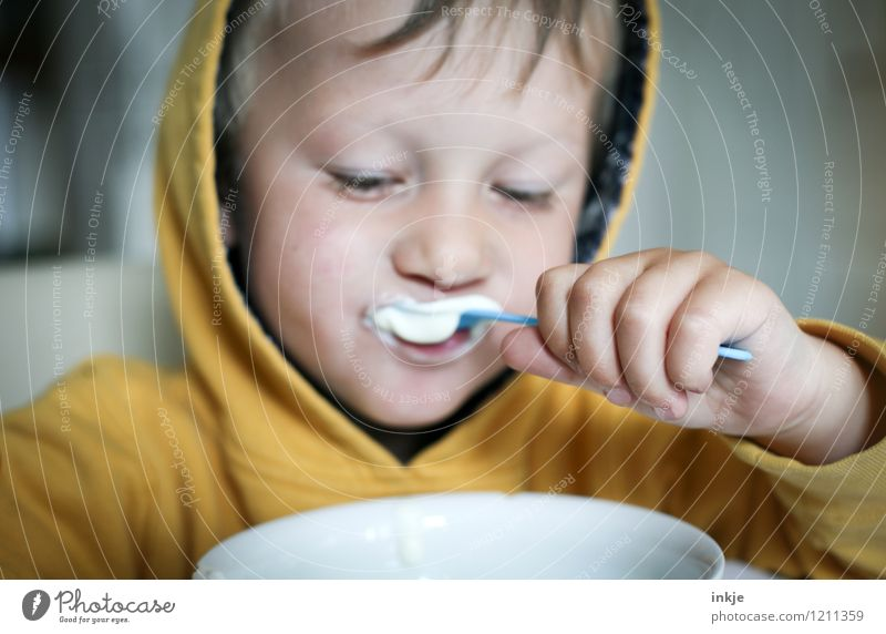 breakfast Yoghurt Nutrition Eating Breakfast Bowl Spoon Lifestyle Child Toddler Boy (child) Infancy Face Hand 1 Human being 1 - 3 years Hooded (clothing) Fresh