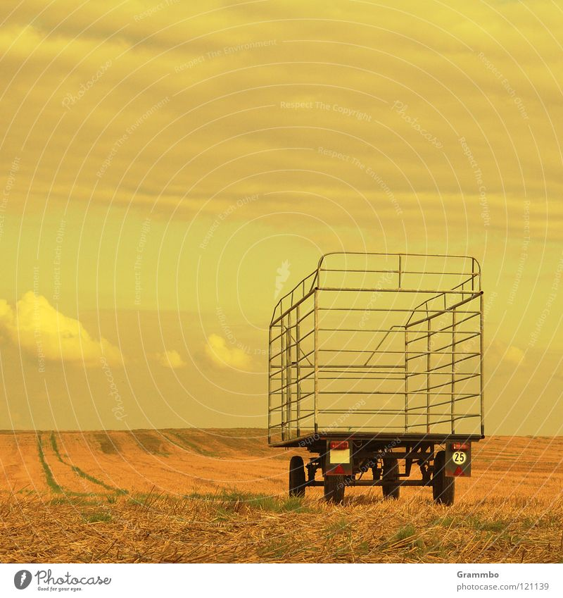 Sky Clouds Autumn Grass Field Horizon Carriage Followers Stopper Yellowness
