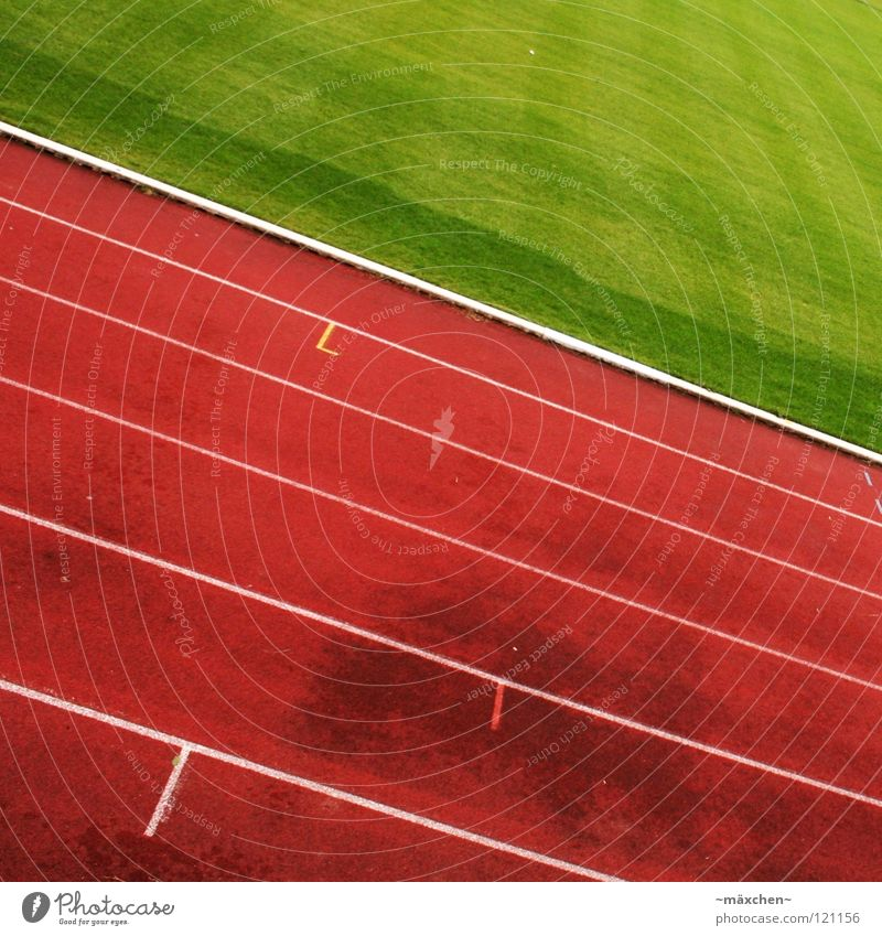 Is there nobody left? Racecourse Stadium Track and Field Red Green White Tracks Tilt Hundred-metre sprint Jogging Endurance Thrashing Bonus Gaudy Square Sports