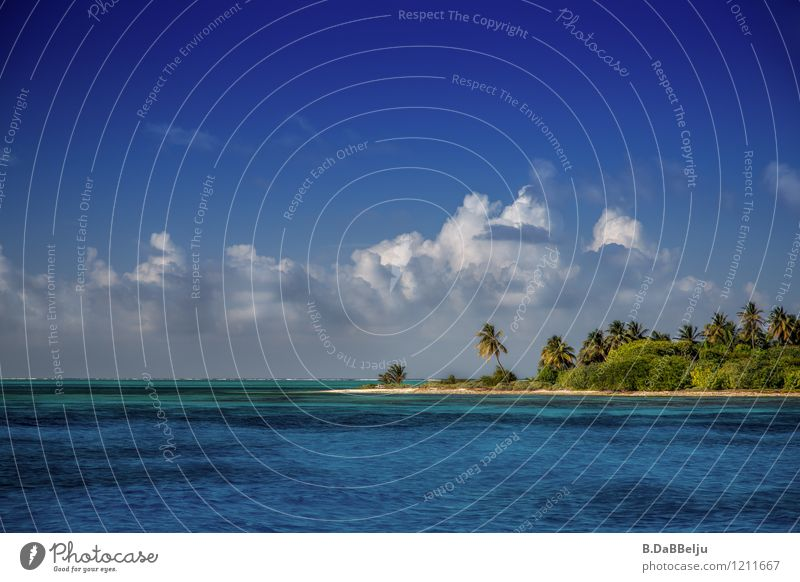 Off to the island Vacation & Travel Tourism Adventure Far-off places Summer Summer vacation Sun Sunbathing Beach Ocean Island Landscape Water Clouds