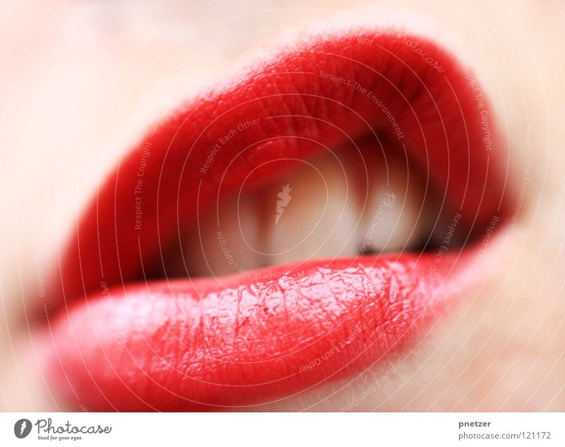 lips Woman Feminine Lipstick Beautiful Macro (Extreme close-up) Close-up lips red Mouth Teeth
