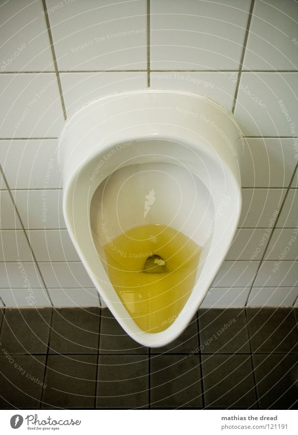 Man White Yellow Bright Dirty Bathroom Round Open Clean Trust Toilet Tile Fluid Alcohol-fueled Disgust Navigation
