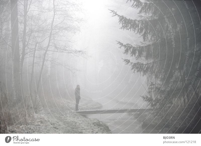 foggy woods #3 Fog Loneliness Cold Dark Tree Winter Forest Brook Wet Damp River Frozen Nature Misty atmosphere Pedestrian Going Ambiguous Mysterious Woman