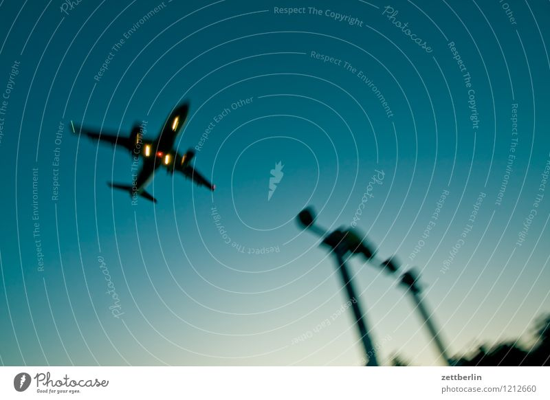 Sky Vacation & Travel Travel photography Flying Aviation Copy Space Beginning Speed Airplane Haste Airplane takeoff Departure Dynamics Airplane landing Airport