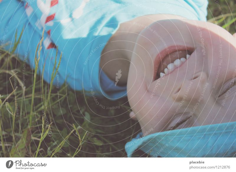 Child Blue Joy Face Love Meadow Natural Grass Boy (child) Funny Playing Healthy Happy Small Laughter Dream