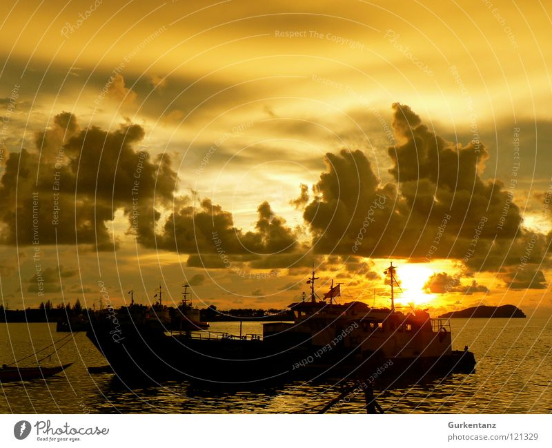 gold harbour Watercraft Coast Ocean Clouds Malaya Sunset Asia Harbour Sky Beach Gold evening mood Borneo kota kinabalu