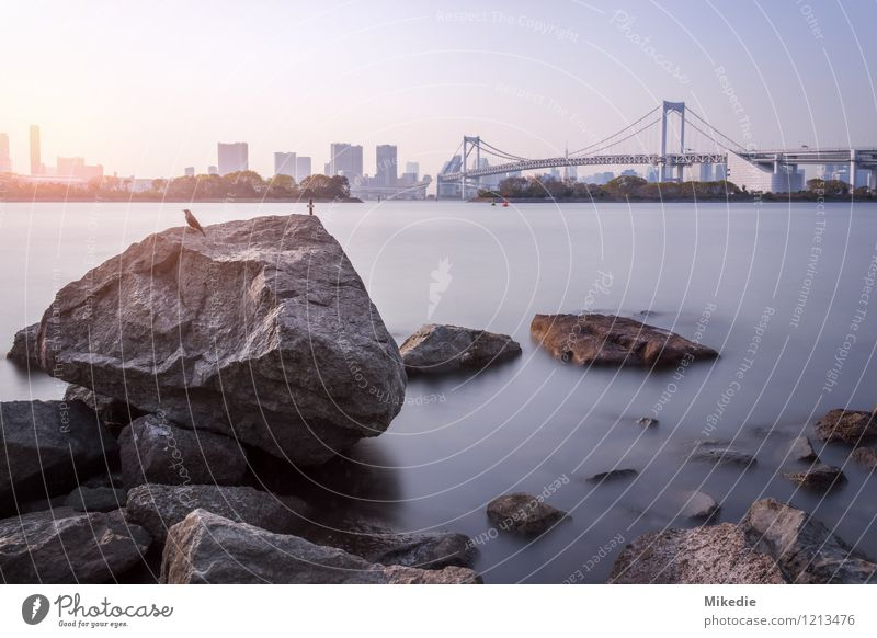 Tokyo bay Water Sun Beautiful weather Rock Town Capital city Port City Skyline Deserted House (Residential Structure) High-rise Bridge Manmade structures