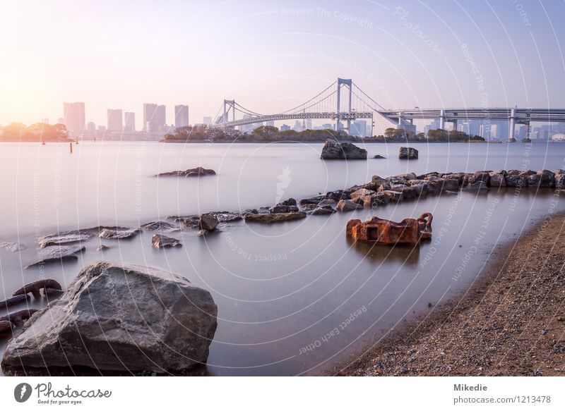 Tokyo bay Rainbow Bridge Earth Sand Water Sun Beautiful weather Rock Town Capital city Port City Skyline Deserted House (Residential Structure) High-rise
