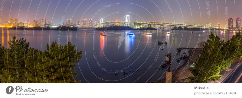 Tokyo bay night panorama Capital city Port City Skyline House (Residential Structure) Harbour Bridge Manmade structures Building Architecture Tourist Attraction