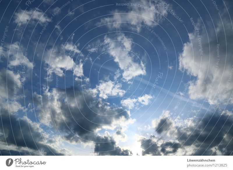 Sky Blue White Clouds Far-off places Gray Freedom Happiness Beautiful weather Curiosity Longing Ease