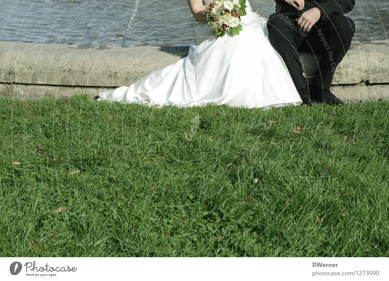 congratulations Elegant Style Wedding Human being Young woman Youth (Young adults) Young man Couple Partner 2 Beautiful weather Grass Park Meadow Dress Suit