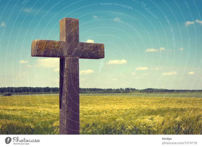The one with the cross Nature Sky Clouds Horizon Sunlight Spring Summer Beautiful weather Agricultural crop Grain field Field Forest Christian cross Sign
