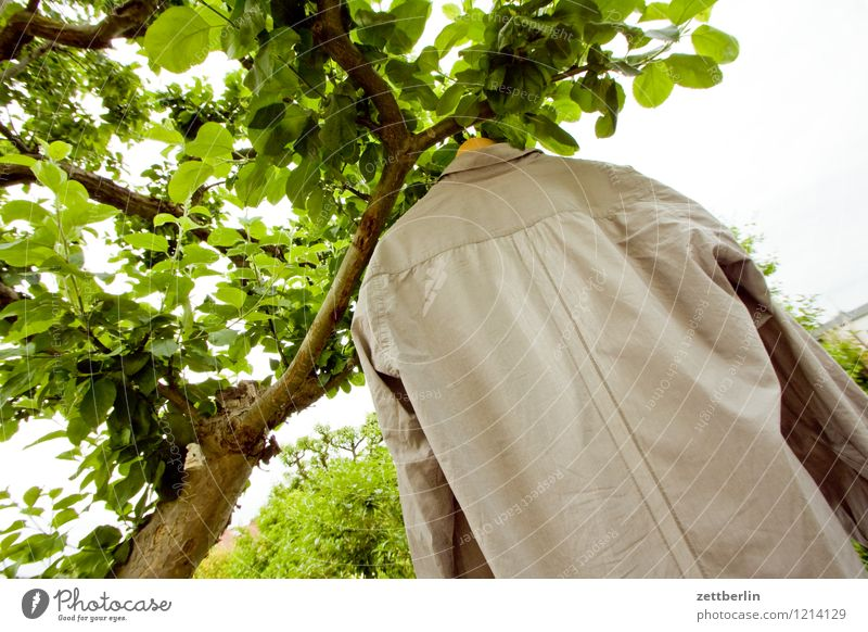 shirt Garden Garden plot Nature Summer Sun Laundry Cleaning Wash Washing Dry Clothesline Hanger Ventilate Shirt Tree Tree trunk Branch Twig Leaf Apple tree