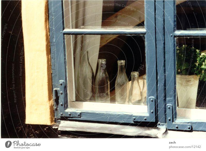 Windows in Denmark Colour photo Exterior shot Detail Deserted Copy Space bottom Day Bottle Living or residing House (Residential Structure) Decoration Flower