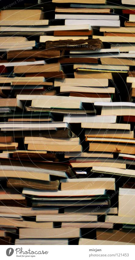 Book Reading Information Analog Collection Know Stack Print media Accumulation Heap Literature Bookshop Reading matter Waste paper Haptic Antiquarian