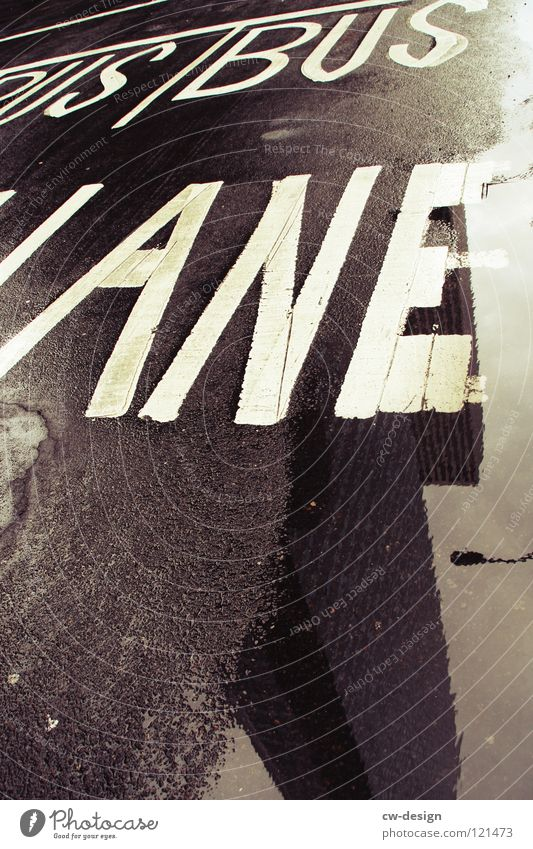 B U S - J A N E Reflection High-rise Puddle Wet Damp Rain Traffic lane Lane markings Black White Gray Loneliness Dark Design Symbols and metaphors Characters