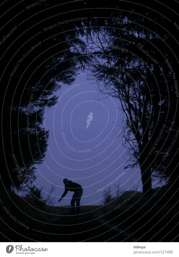 Human being Tree Forest Dark Street Grass Lanes & trails Fear Dangerous Threat Posture Hill Hide Twig Fir tree Tunnel
