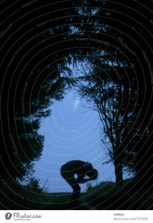 Human being Tree Forest Dark Street Grass Lanes & trails Sadness Dangerous Threat Grief Posture Hill Hide Twig Fir tree