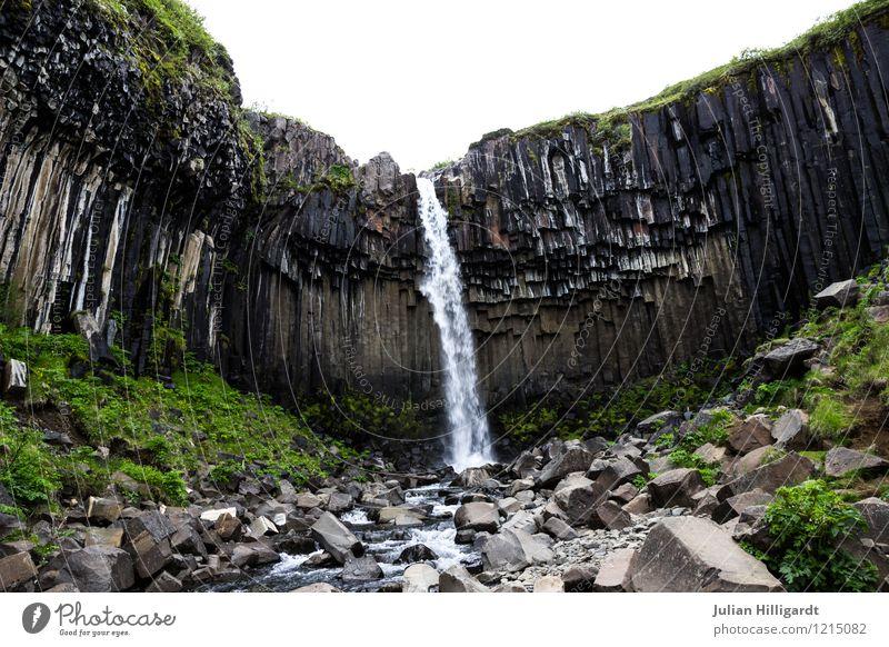 Nature Vacation & Travel Plant Water Landscape Joy Animal Cold Environment Lifestyle Rock Power Authentic Success Energy Esthetic