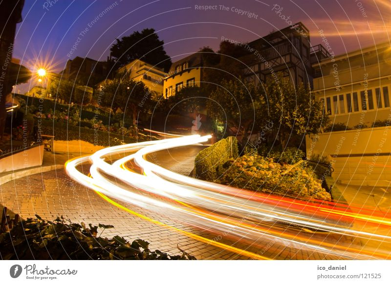 Lombard Street @ Russian Hill Lombard st. San Francisco California Steep Long exposure Curve Winding road Night Flower Back-light SF USA West Coast