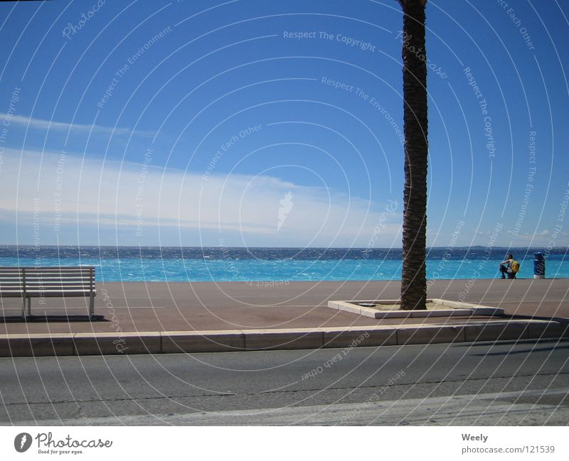 Human being Sky Sun Ocean Summer Beach Vacation & Travel Clouds Relaxation Freedom Bench Sidewalk Turquoise Palm tree Paradise Blue sky