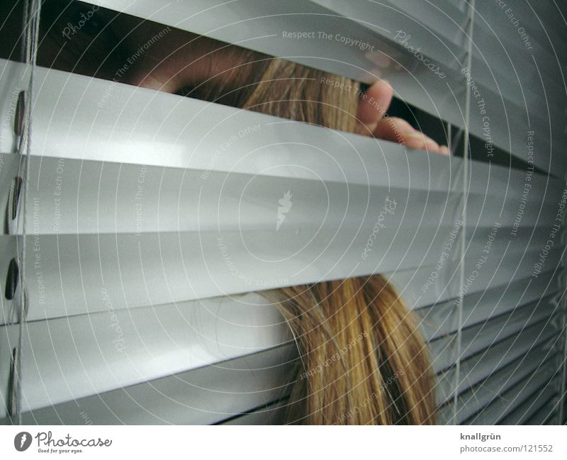Tangled Venetian blinds Fingers Long-haired Backwards Woman Hair and hairstyles Disk between them Face Silver Bright Dirty Blonde