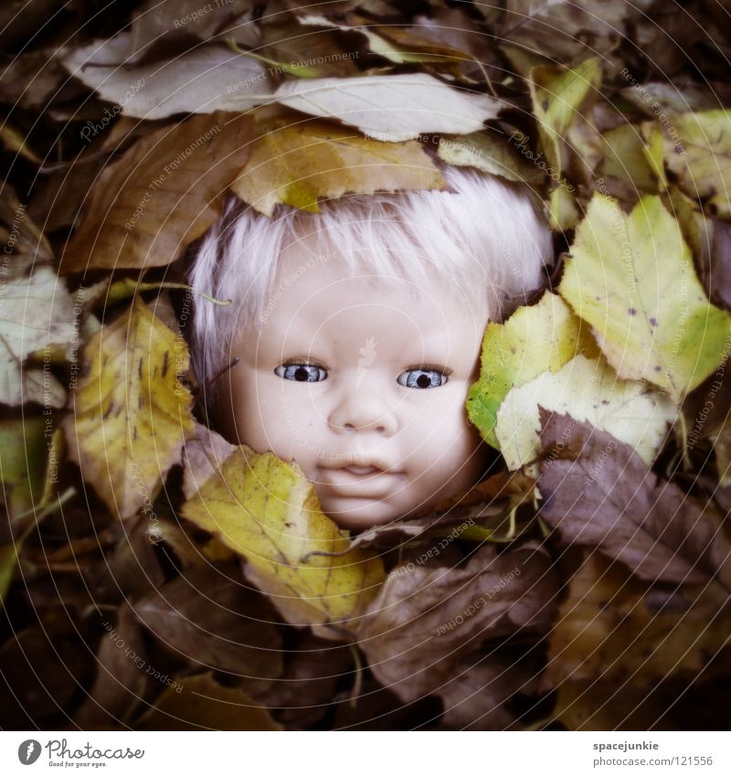 Lost & Found Toys Threat Alarming Blonde Chucky Creepy Horror film Evil Sweet Cute Leaf Autumn Seasons Tree Whimsical Autumn leaves Autumnal colours Joy Doll