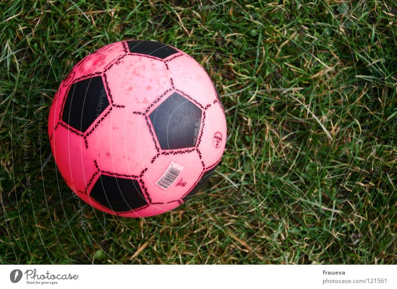 Loneliness Sports Playing Grass Soccer Pink Aviation Ball Round Broken Leisure and hobbies Toys Sphere Forget