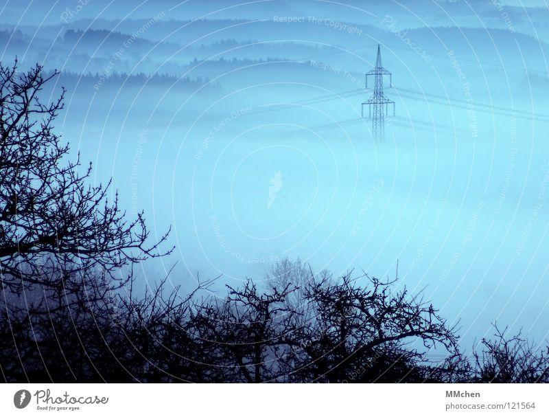 Nebulised Go under Light Fog Tree Bushes Electricity Electricity pylon High voltage power line Cable Fog bank Dark White Morning fog Vista Dew Hoar frost Cold