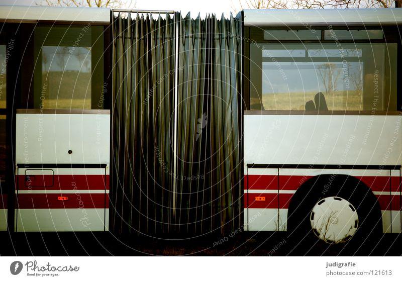 White Red Colour Window Wait Transport Stripe Logistics Connection Station Americas Vehicle Bus Parking Vista Means of transport