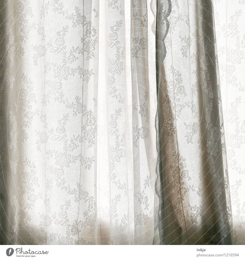 Late sleeper interior arrangement Lifestyle Style Relaxation Calm Living or residing Curtain Drape Ornament Flowery pattern Hang Old Beautiful Moody Break