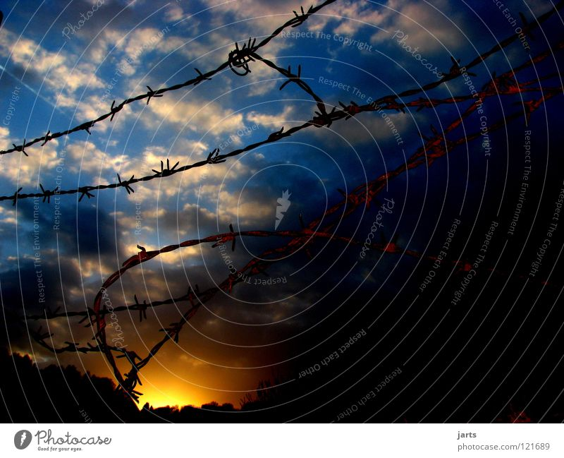freedom Clouds Sunset Fence Barbed wire Captured Sky Detail Freedom Abentrot Penitentiary freight collect jarts