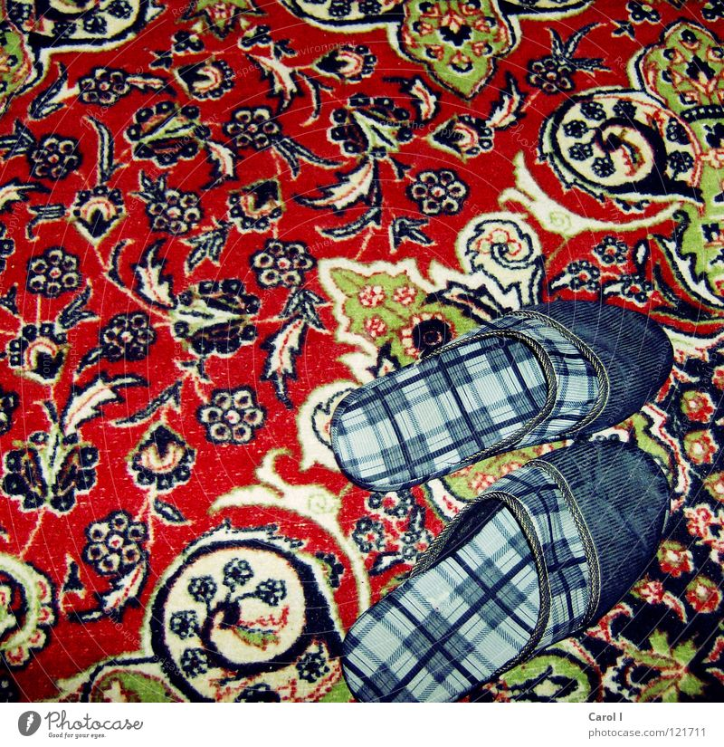 COURAGE TO BE UGLY! Slippers House (Residential Structure) Footwear Finch Physics Slip into Extract Checkered Carpet Pattern Hideous Red Unused Desert Turkey