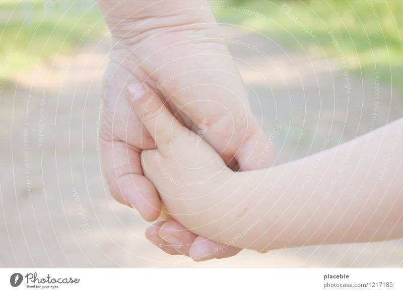 Human being Woman Child Nature Summer Sun Hand Landscape Adults Warmth Love Movement Happy Small Going Together