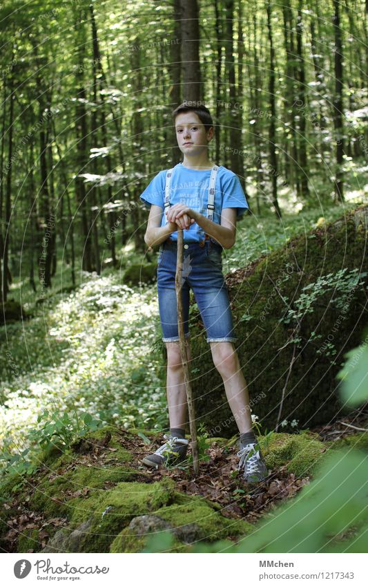 stick and stone Trip Adventure Masculine Child Boy (child) 1 Human being 8 - 13 years Infancy Summer Tree Forest Rock Jeans Suspenders Stand Hiking Wait