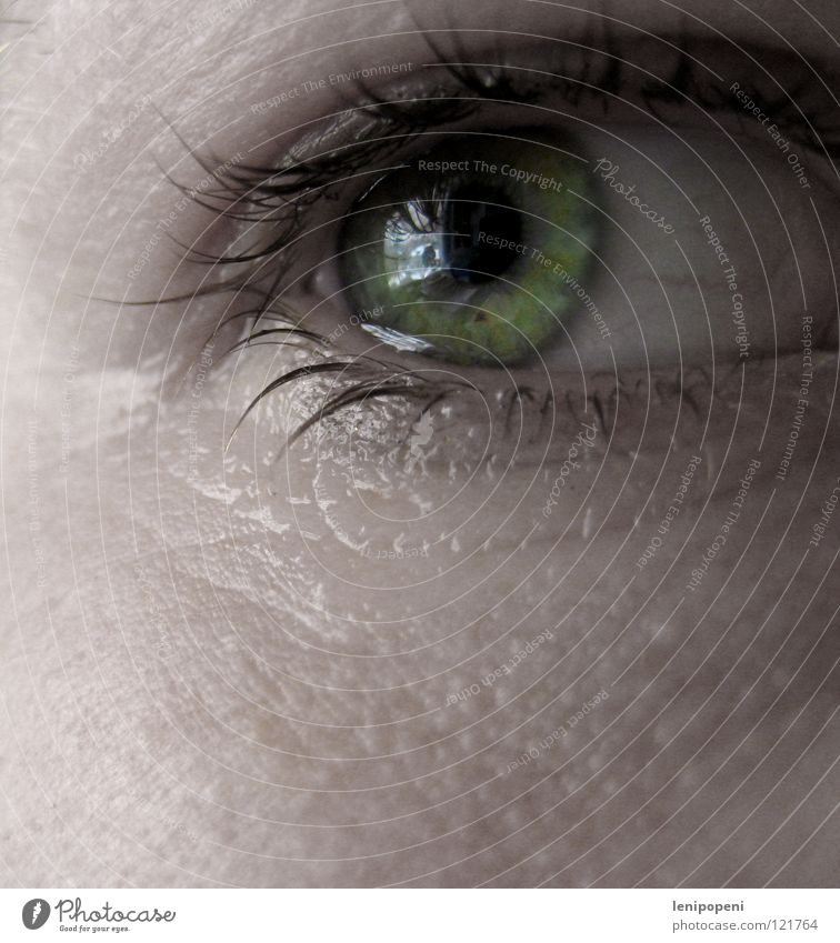 Woman Water Green Eyes Sadness Bright Skin Grief Wrinkles Distress Pallid Cry Eyelash Tears Disappointment Pupil