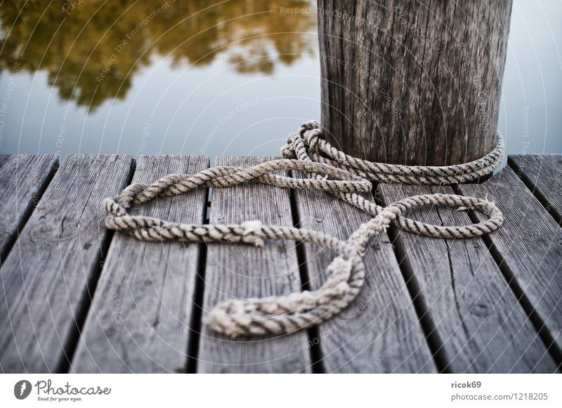 jetty Coast Lakeside Navigation Boating trip Harbour Wood Maritime Jetty Rope Colour photo Subdued colour Exterior shot Deserted Evening
