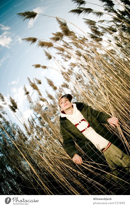 The man from the reeds Man Fisheye Common Reed Curved Breeze Clouds Cold January February Winter To go for a walk Looking Posture Arrogant Illusion Important