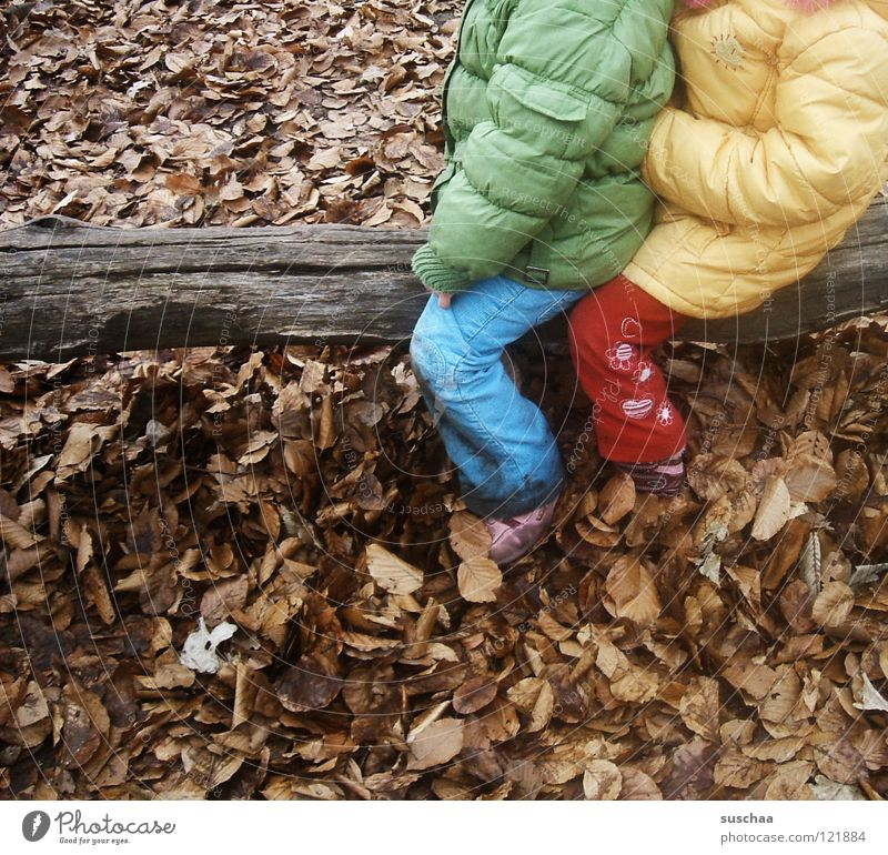 yesterday at the playground ... Child Playing Romp Playground Cold Leaf January February Tree trunk Wood Multicoloured Pants Jacket Anorak Joy Clothing Sit