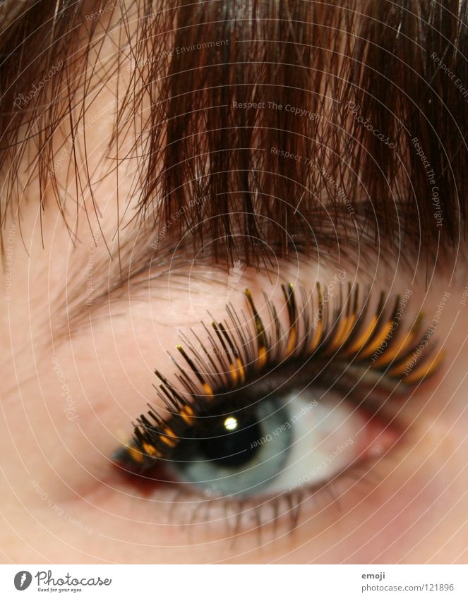 Beautiful Eyes Hair and hairstyles Skin Gold Cute Near Long Carnival Club Cosmetics False Bangs Eyelash Eyebrow Placed