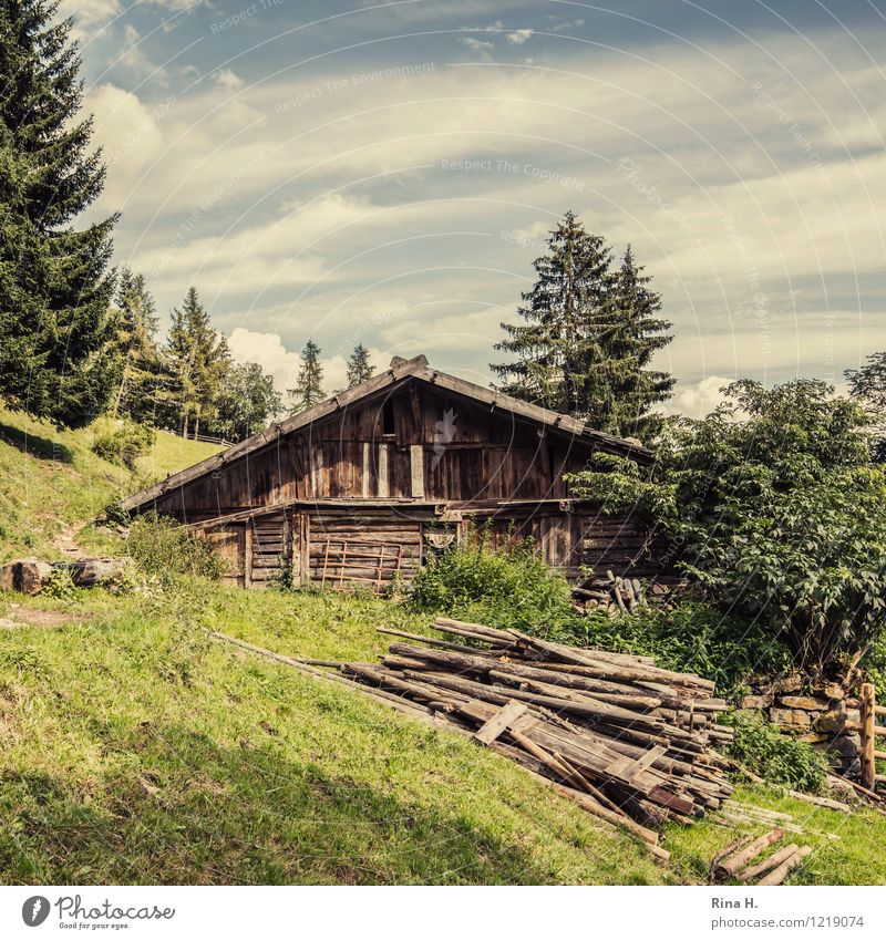 idyllic Nature Landscape Clouds Summer Forest Hill Alps Mountain South Tyrol Hut Building Authentic Natural Meran Wooden house Slope Rustic Colour photo