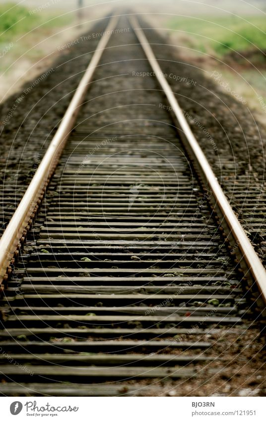 Vacation & Travel Far-off places Stone Lanes & trails Landscape Transport Railroad Perspective Logistics Target Infinity Long Railroad tracks Discover Steel