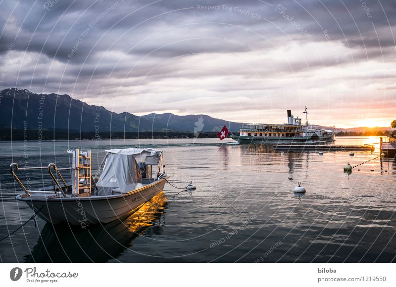 At the lake Water Lakeside Lake Thun Navigation Inland navigation Steamer Moody Happy Wanderlust Sunset Dusk Colour photo Exterior shot Evening Twilight Light