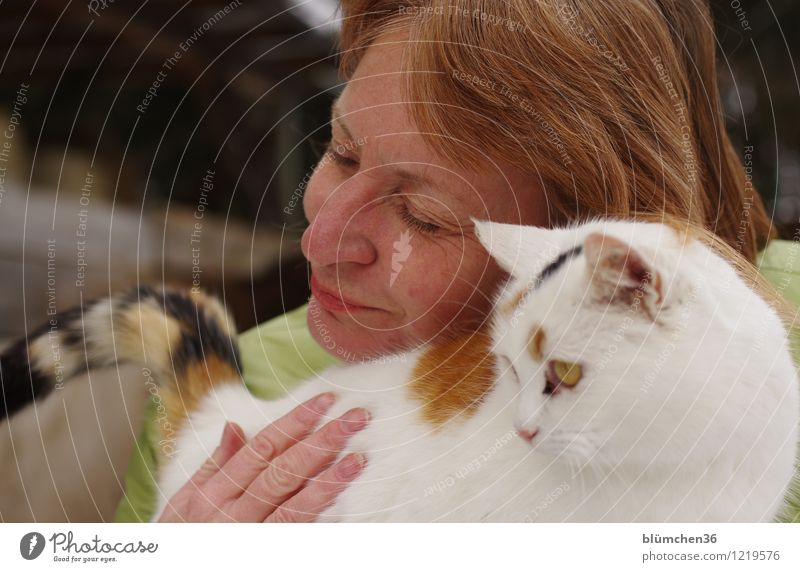 cuddly group Human being Feminine Woman Adults Head Face Hand Fingers 45 - 60 years Pet Cat Animal face To enjoy Smiling Looking Friendliness Happy Uniqueness