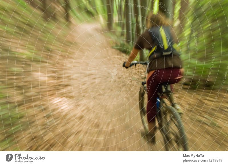 cyclist riding Man Summer Tree Relaxation Joy Adults Mountain Lanes & trails Rock Leisure and hobbies Action Cycling Fitness Adventure Hill Guy