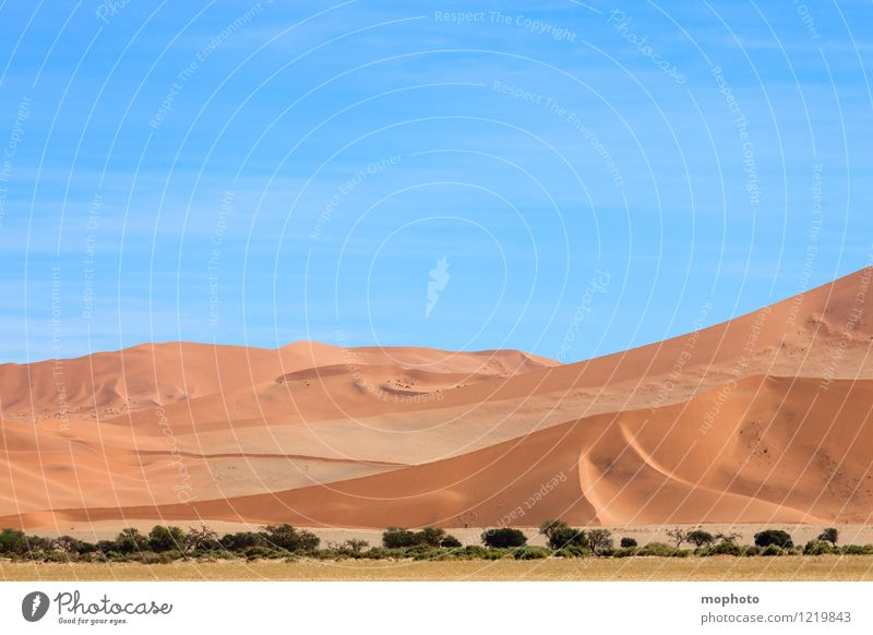 Beautiful curves #1 Vacation & Travel Tourism Far-off places Safari Nature Landscape Sand Sky Warmth Desert Namib desert Blue Yellow Orange Adventure Climate