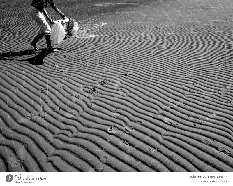 lines impressions flying Ocean Lake Summer Black White Low tide Speed Earth Sand Water mare sea Fly Dragon Wind Contrast Furrow Line Sign High tide Dynamics